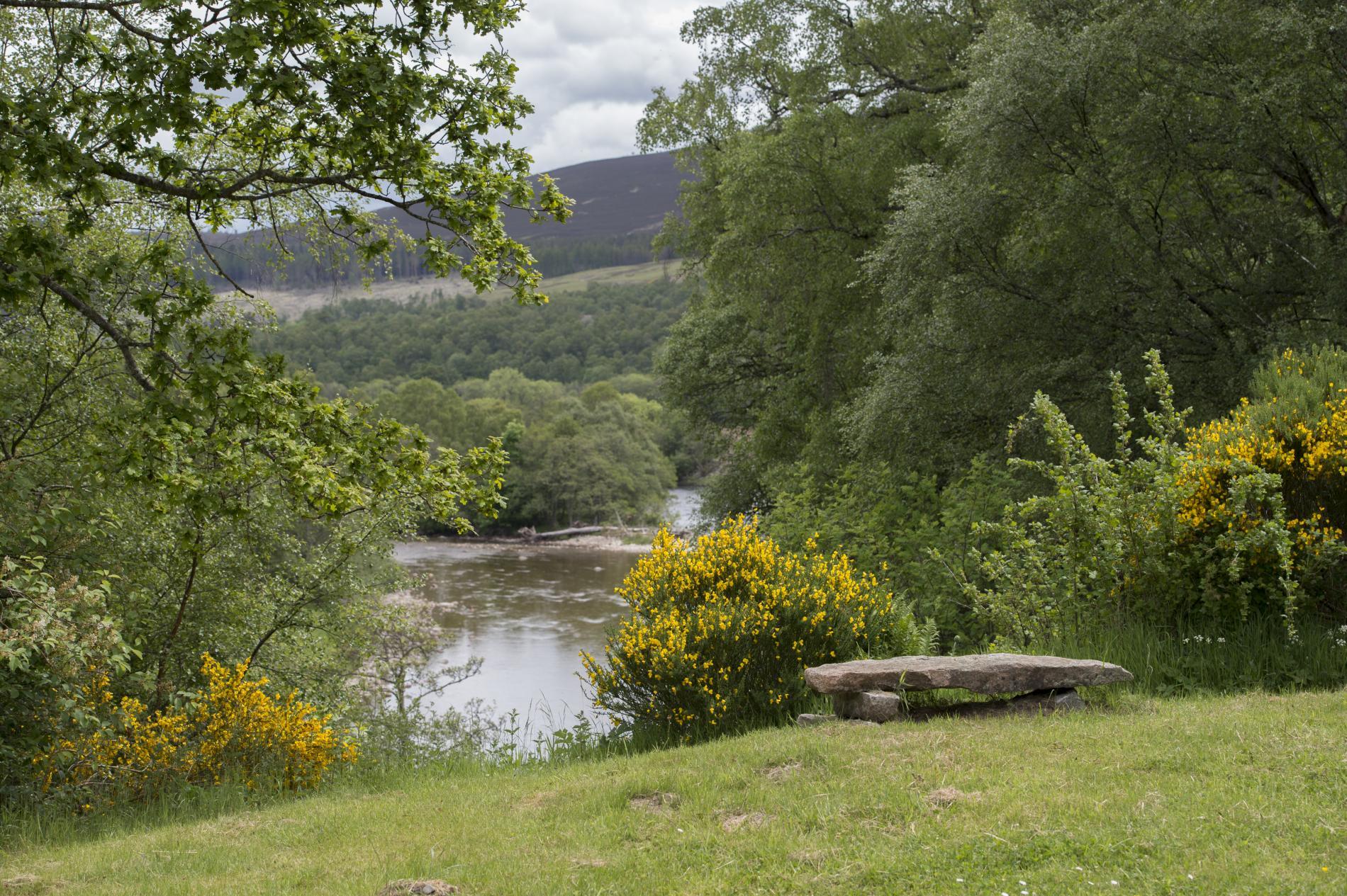 Braehead Lodge With River Views At Glen Tanar Awaits You