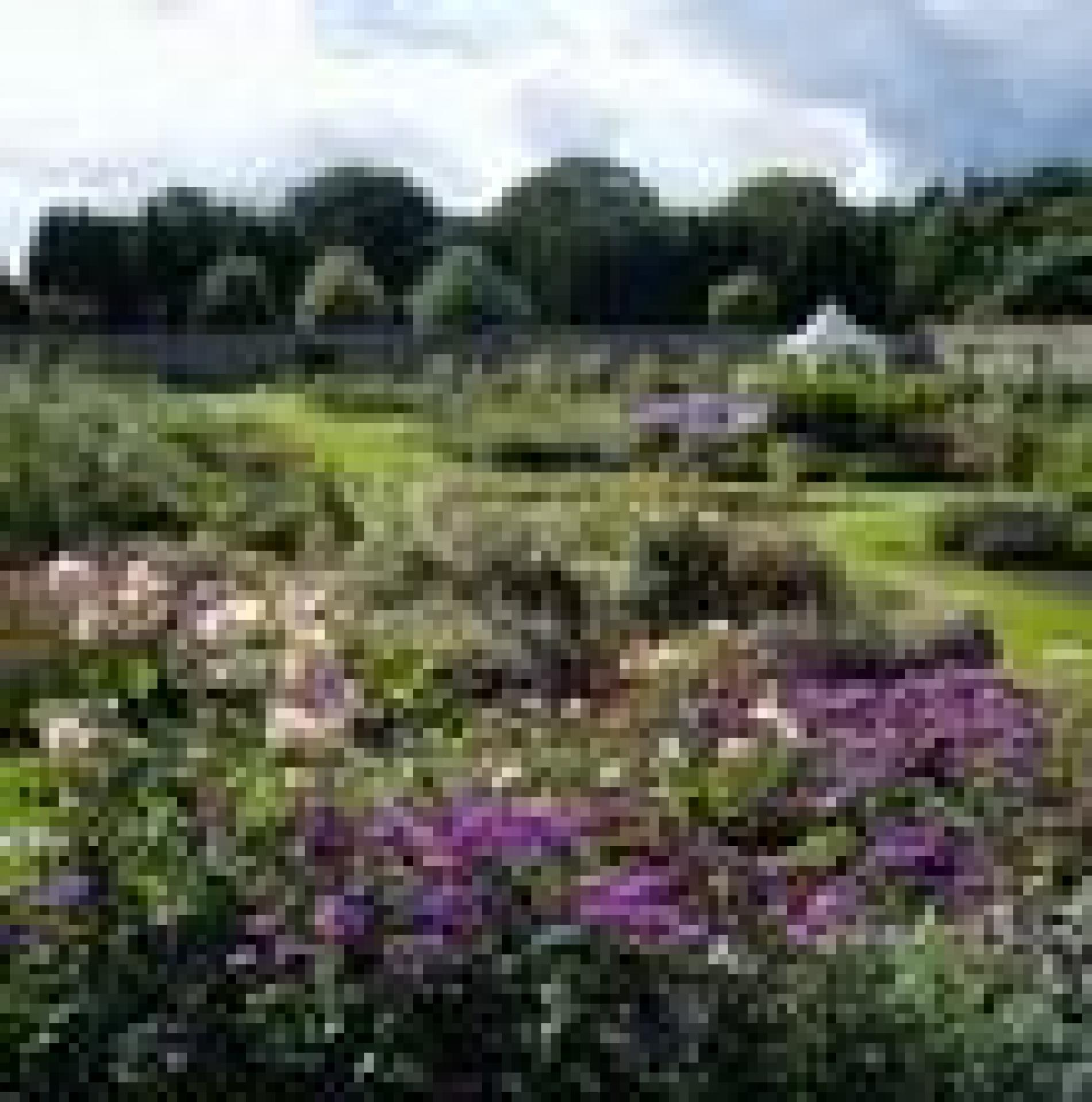 Drum Castle Garden and Estate Fun For All The Family