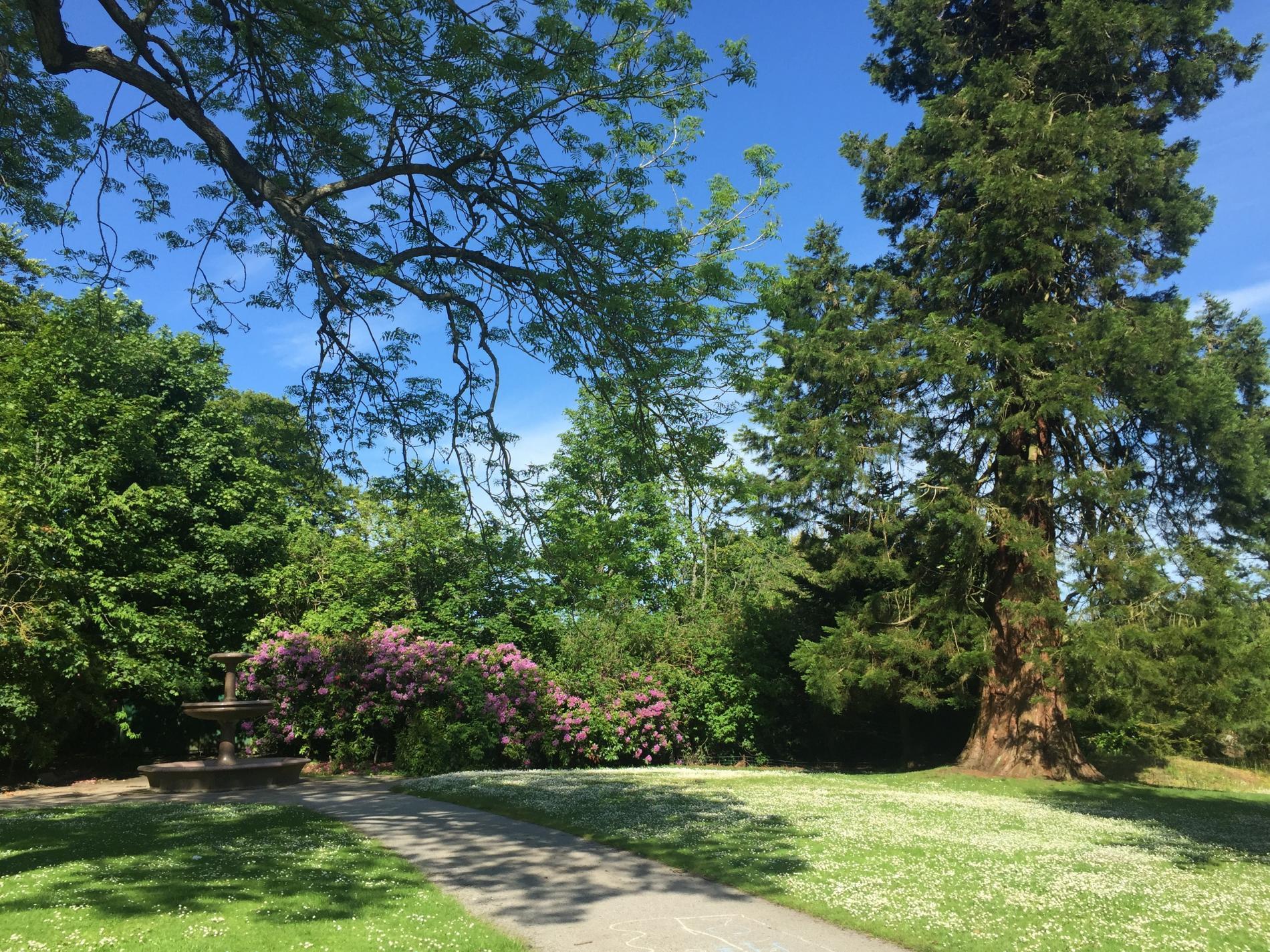hazlehead park visitaberdeenshire